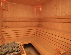 bansko-hotel-all-seasson-club-zimovanje-bansko (36)
